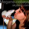 Megane-Cobays
