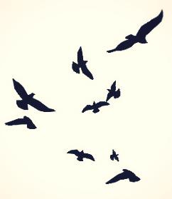 « Ecrire liberté sur le bord d'une plage, c'est déjà avoir la liberté de l'écrire. Même si la mer efface ce mot : la liberté demeure. »