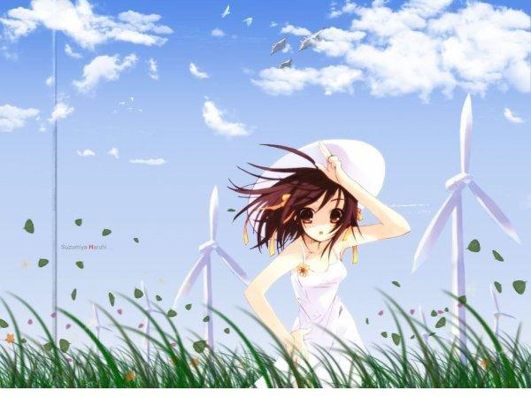 ...mangascénario : Nagaru Tanigawa dessin : Gaku Tsugano Japon 11 tomes série en cours   France-Belgique 9 tome série en cours  Type : Seinen Genre : Comedie, Fantastique Animé2 saisons avec chaque 14 épisodes liens en vostfr ici  en en vf ici ...