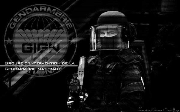 G.I.G.N; R.A.I.D; Force spéciales