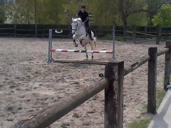 Cours de saut 2