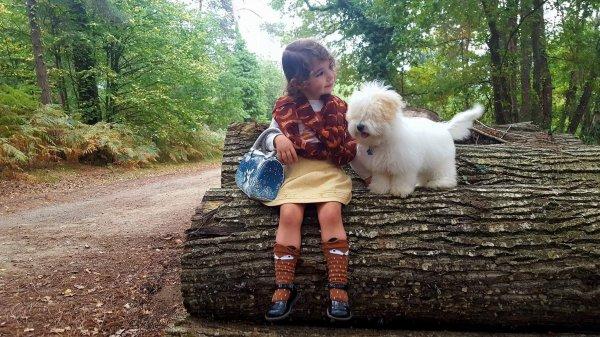 petite ballade en forêt