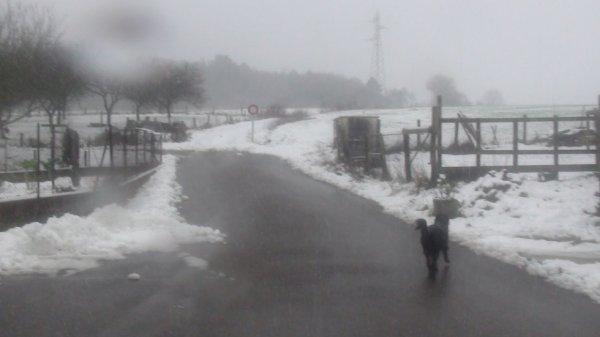 il a neiger et oui bon allez mona attend moi lol ;)