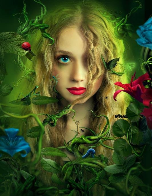 Lhymne à La Beauté Du Monde Bienvenu Sur Mon Blog