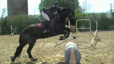 Un cheval reconnait-il son cavalier?