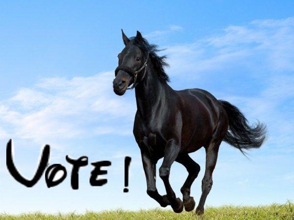 VOTER!!!