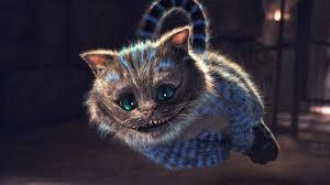Le chat trop chelou !!!!!
