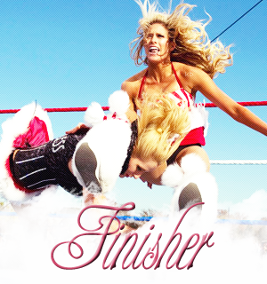 ~Finisher~