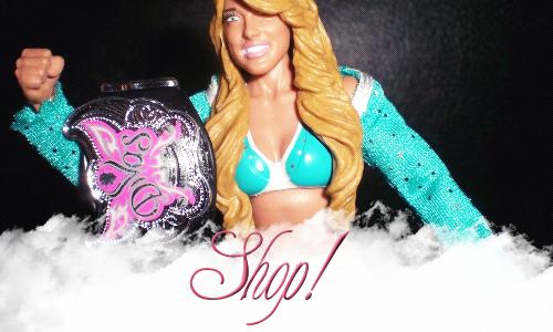 ~ WWE Shop ~