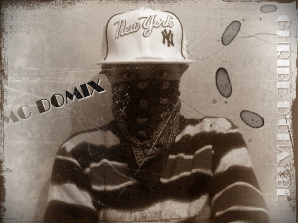 DOMIX RAP
