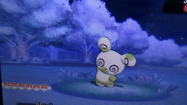 ☾SHINY ★5 ➢ Spinda☽