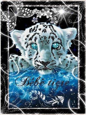 B b tigre blanc coralie - Bebe tigre mignon ...