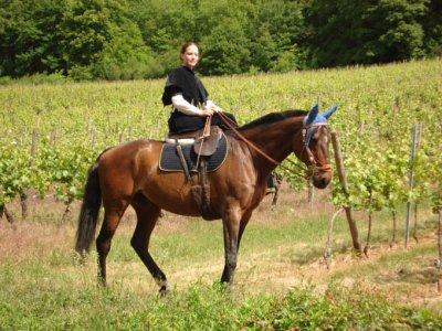 052011 - à cheval