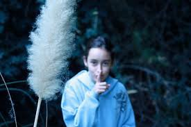 Film d'horreur : Tout savoir sur « Sans un bruit »