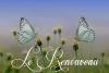 le-renouveau-blog