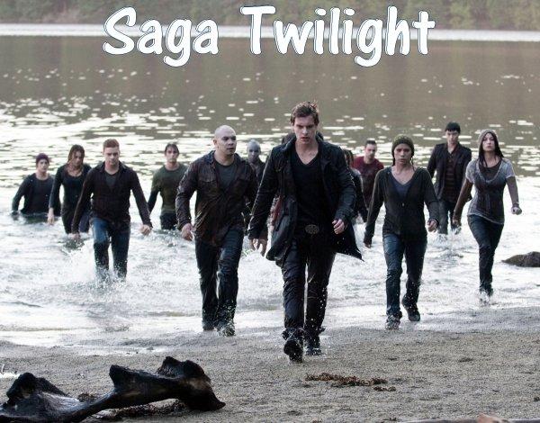 Twilight (saga)