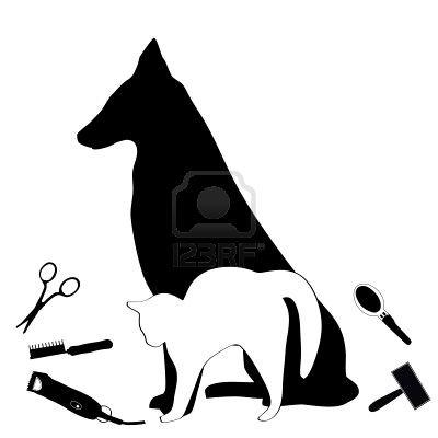 Salon de toilettage canin paco black tea des guerriers - Le salon de toilettage petshop ...