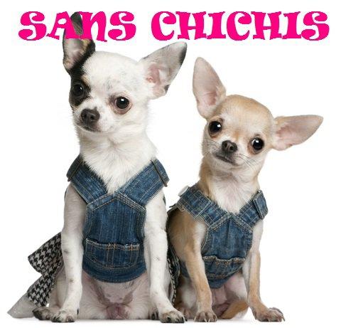 http://www.sans-chichis.com/fr/boutique-sans-chichis-accessoires-pour-petit-chien