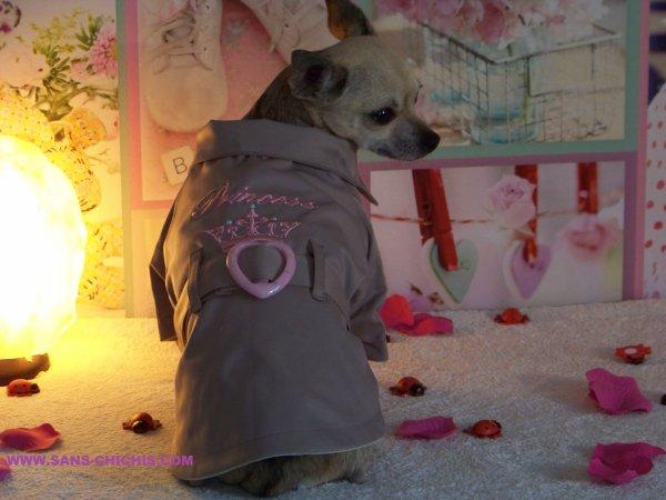 http://www.sans-chichis.com/fr/boutique-sans-chichis-manteau-chihuahua/50-boutique-sans-chichis-manteau-chihuahua-impermeable.html