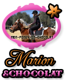 Photo de mon-poney-en-chocolat