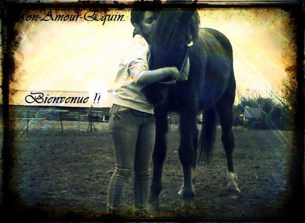Faites de votre cheval le meilleur des partenaires ♥.