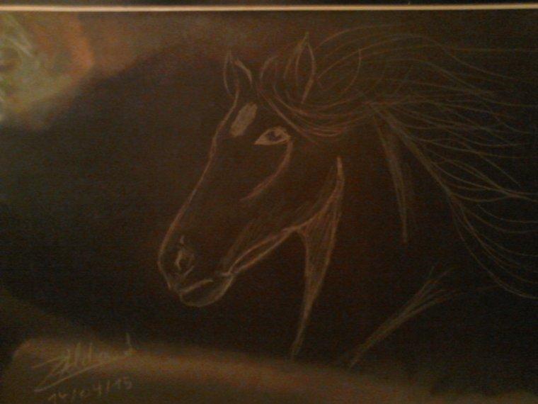 cheval blanc sur noir ^^ teste ^^