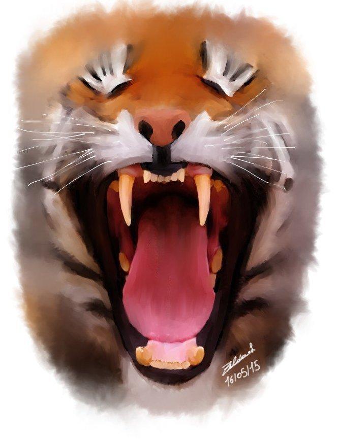 mon dessin du tigre rugissent