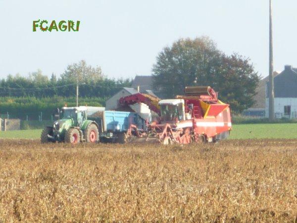 Arrachages 2010 : Pommes De Terre