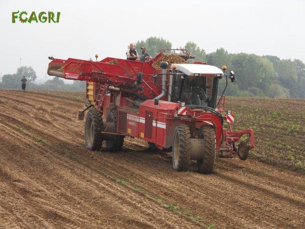 Arrachages 2010 : Pomme de terres