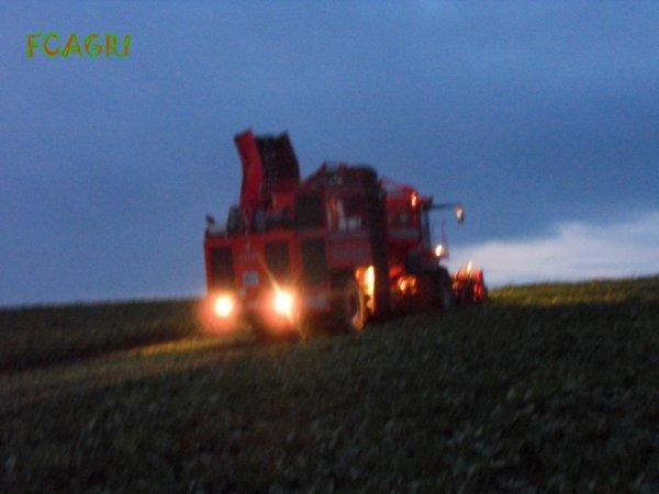 Arrachages 2010 : Pomme de terre