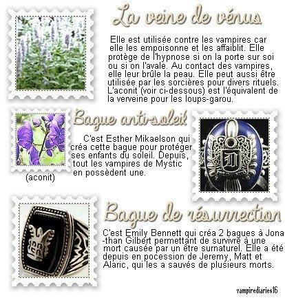 + Objets et plantes