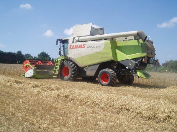 La claas lexion 570 à battre le blé