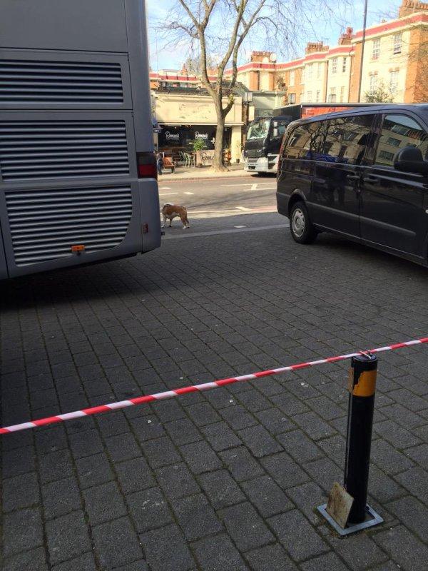 6 Mars, 2015 London  - TH arrivant sur le site ! mon dieu le tour Bus !! il m'a manqué !!!
