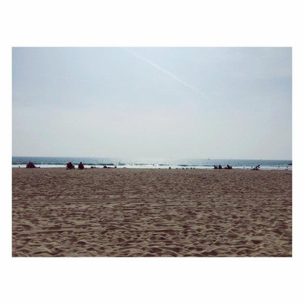 Bill instagram : at the beach #Venice.  A la plage #Venice