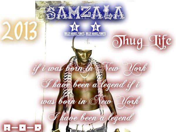 SAMZALA 2013