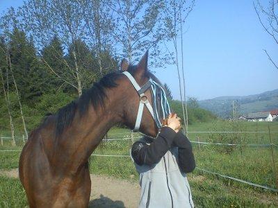 « Le cheval idéal existe c'est celui auquel on ne demande que ce qu'il peut nous donner. »