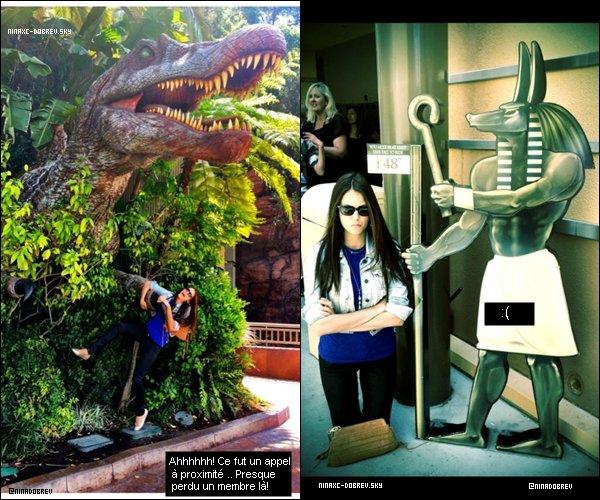 21 avril 2012 : La charmante Nina a posté des photos personnelles sur sont twitter
