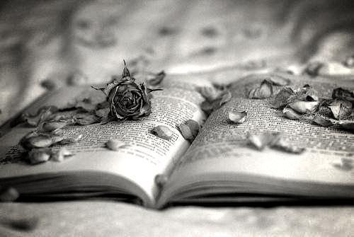 L'écriture..