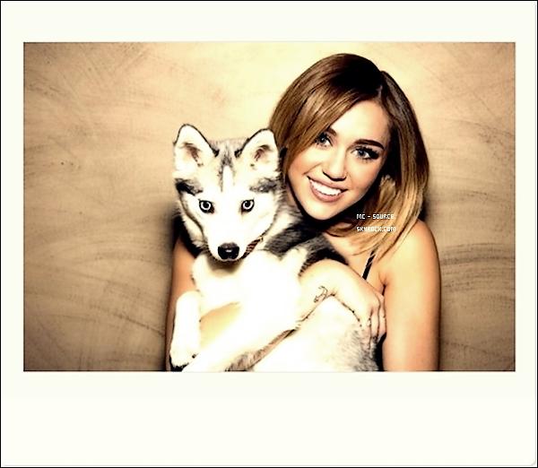 15/02/12 - Miley a été apercu sortant des studios « Jimmy Kimmel Live » à Hollywood, CA.  + Un photoshoot qu'elle a fait pour l'émission, mais aussi sa  performance sur «Lonesome When You Go».  Tu aimes?