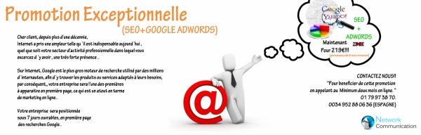 Promotion Exceptionnelle SEO + ADWORDS