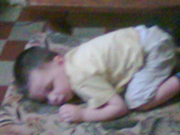 dodo dort dans le fautieul
