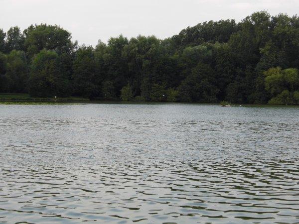 étang d annay
