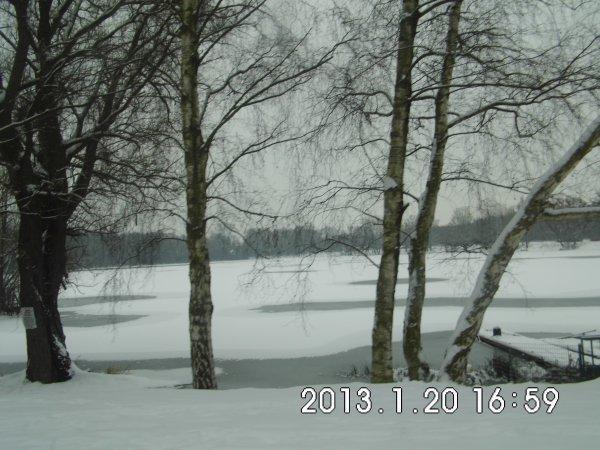 étang briquette et marais meurchin hiver 2013