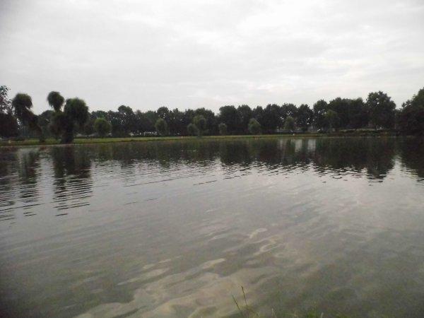 étang de  Waregem, (une carpe de 6 kilo et une case a la batterie)