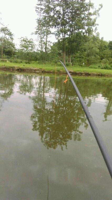 Petite pêche à la canne