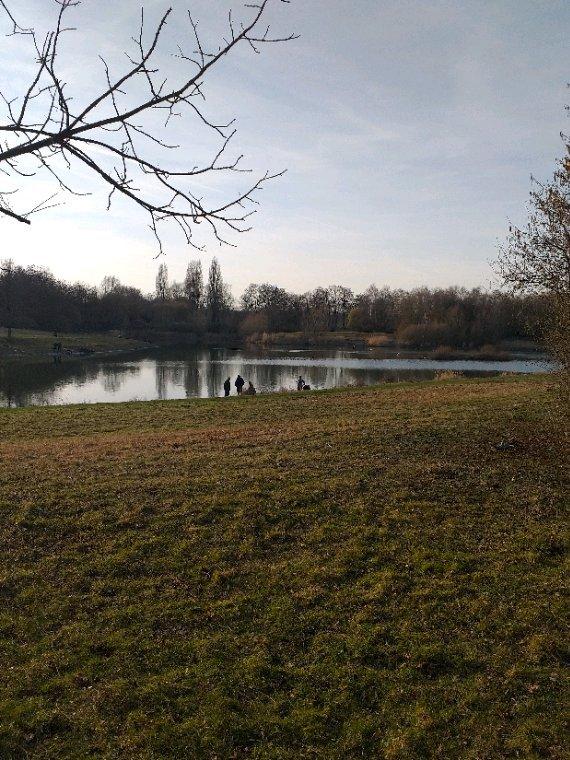 Petite balade au étang