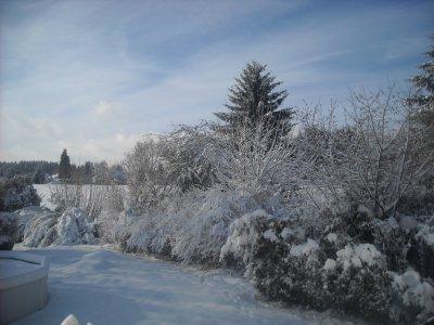 le jardin sous la neige ..... magnifique