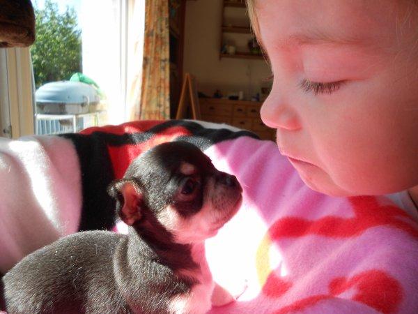 l amour entre 2 bébés est né