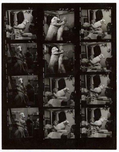 divers planches contactes de Marilyn en 1958