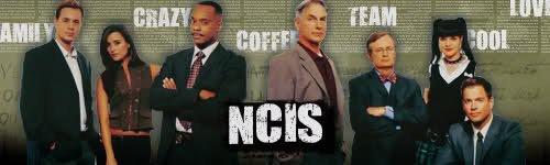 NCIS ♥  NCIS : Enquêtes spéciales ♥